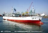 远洋鱿鱼船816